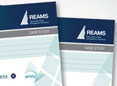 Reams Asset Management